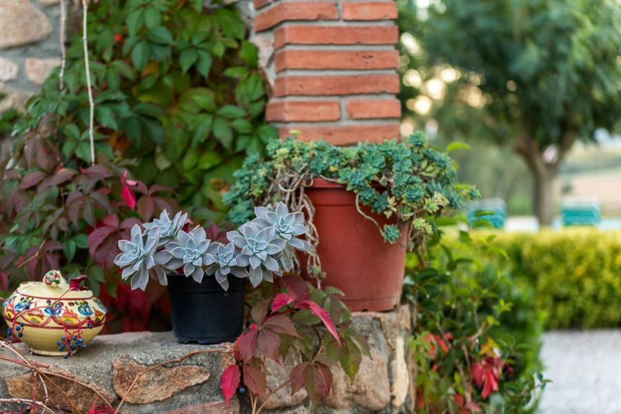 detalle pozo de la casa rural de Can Micos, entre el Montseny y la Costa Brava