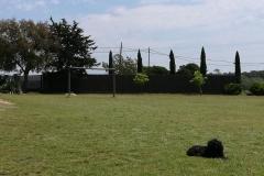 campo de 2000 m2 del alojamiento rural de Can Micos | Costa Brava