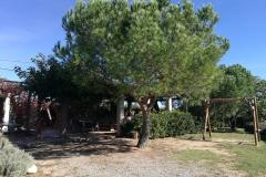 Pino de la casa rural de Can Micos en Girona | Costa Brava