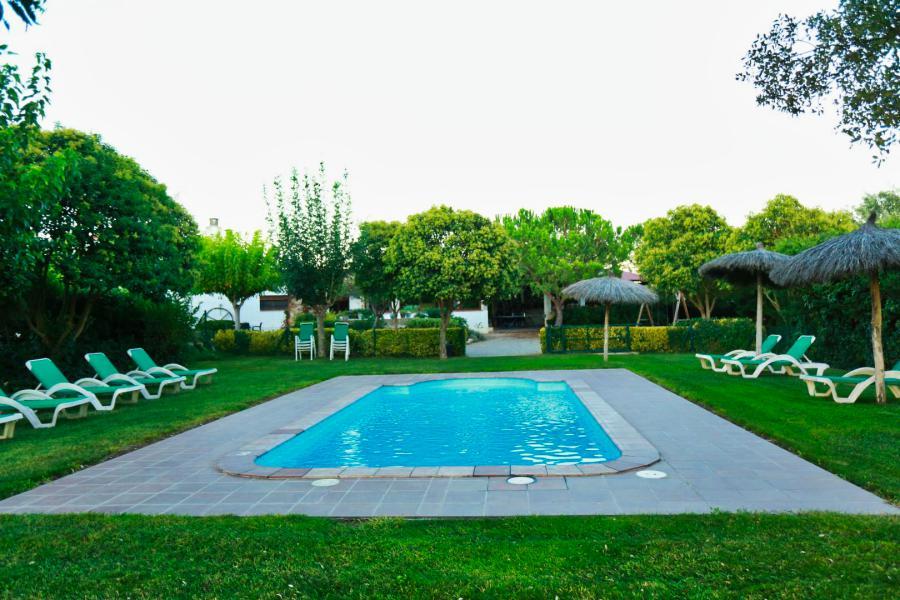 piscina y zona de tomar el sol del alquiler vacacional de Can Micos