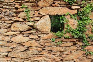 naturaleza en casa rural